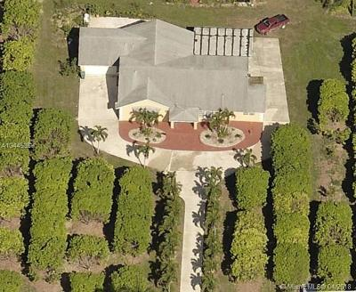 Homestead Single Family Home For Sale: 21295 SW 376th St