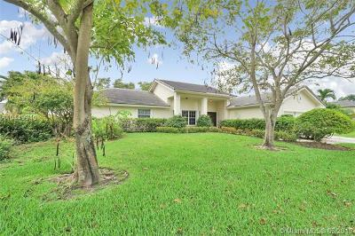 Pembroke Pines Single Family Home For Sale: 19750 NW 8th St