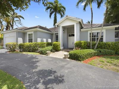 Palmetto Bay Single Family Home For Sale: 17651 SW 81st Ct