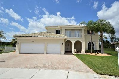 Pembroke Pines Single Family Home For Sale: 6893 SW 194th Ave