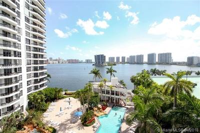 Aventura Single Family Home For Sale: 3600 Mystic Pointe Dr #706