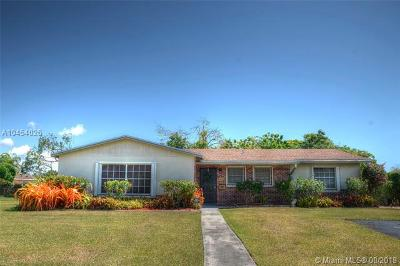 Palmetto Bay Single Family Home For Sale: 9123 SW 183rd Ter