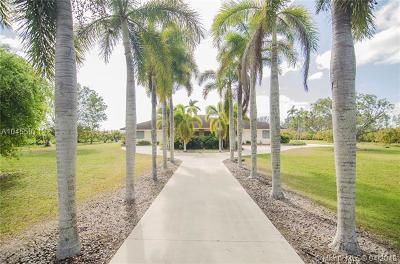 Homestead Single Family Home For Sale: 26750 SW 182nd Ave