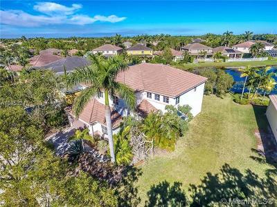Broward County Single Family Home For Sale: 647 Nandina Drive