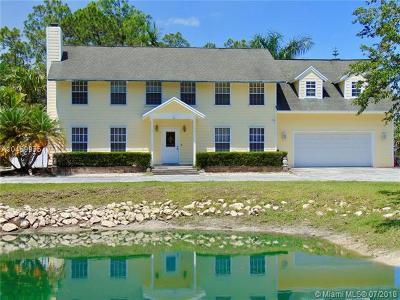 Jupiter Single Family Home For Sale: 17081 Mellen Ln