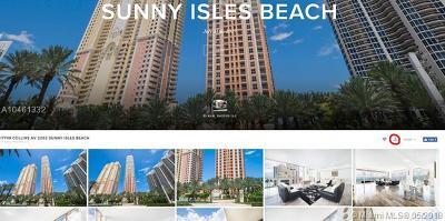 Coconut Grove, Coral Gables, Key Biscayne, Miami, Pinecrest Condo For Sale: 17749 Collins Ave #2202