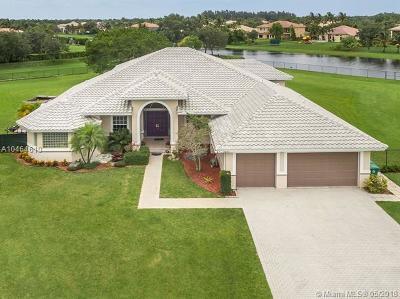 Mystique Single Family Home For Sale: 10631 SW 37th Pl