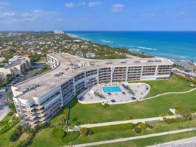 Jupiter Condo For Sale: 1300 S Highway A1a #201