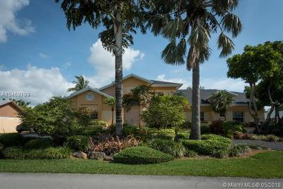 Palmetto Bay Single Family Home For Sale: 7861 SW 181 Ter