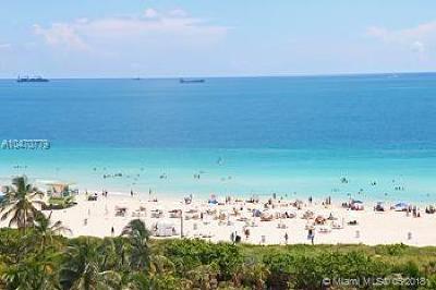 Miami Beach Condo For Sale: 50 S Pointe Drive #1007