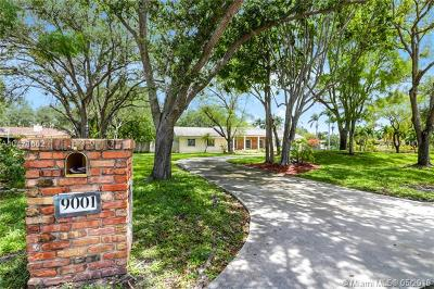 Miami Single Family Home For Sale: 9001 SW 124th St