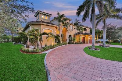 Blackhawk Reserve, Belmont Lakes at Davie 16, Belmont Lakes At Davie Single Family Home For Sale: 15140 SW 16th