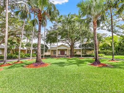 Palmetto Bay Single Family Home For Sale: 7141 SW 139th St