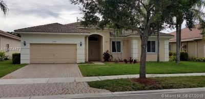 Pembroke Pines Single Family Home For Sale: 6163 SW 191st Ave