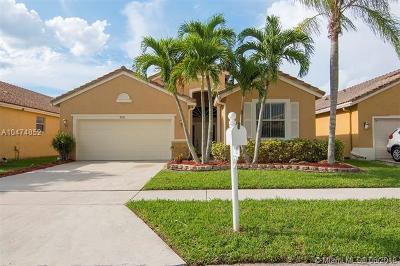 Boynton Beach Single Family Home For Sale: 9591 Lago Dr.