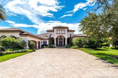 Blackhawk Reserve, Belmont Lakes at Davie 16, Belmont Lakes At Davie Single Family Home For Sale: 15190 SW 16th St