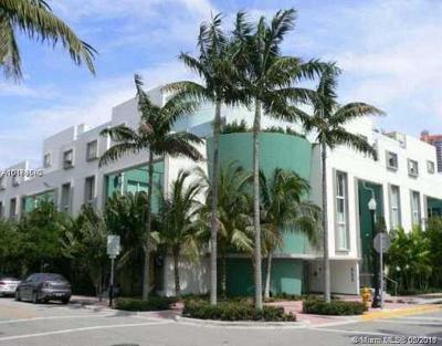Miami Beach Condo For Sale: 828 3rd St #205