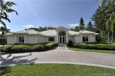Palmetto Bay Single Family Home For Sale: 7190 SW 148th Ter
