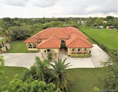 Homestead Single Family Home For Sale: 34405 SW 214th Ave