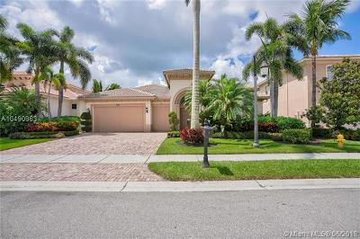 Palm Beach Gardens Single Family Home For Sale: 534 Les Jardin Dr