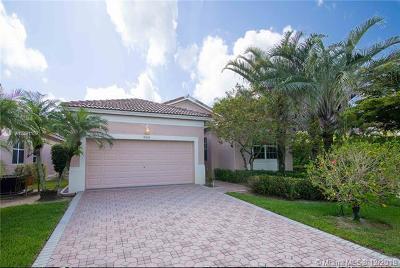 Boynton Beach Single Family Home For Sale: 8824 W Downing St