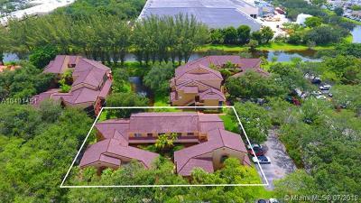 Miami-Dade County Condo For Sale: 15495 N Miami Lakeway N #205