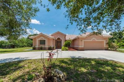 Boynton Beach Single Family Home For Sale: 8410 N Mizzen Dr
