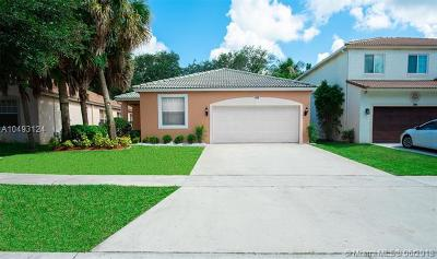 Royal Palm Beach Single Family Home For Sale: 192 Seminole Lakes Dr