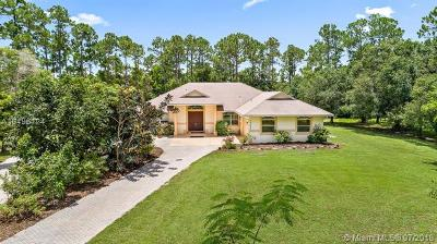 Jupiter Single Family Home For Sale: 12596 170th Road North