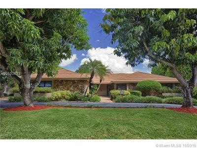 Palmetto Bay Single Family Home For Sale: 8101 SW 162nd St