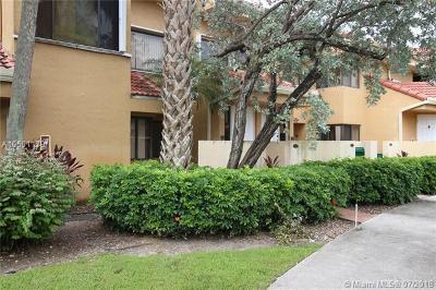 Miami FL Condo For Sale: $160,000