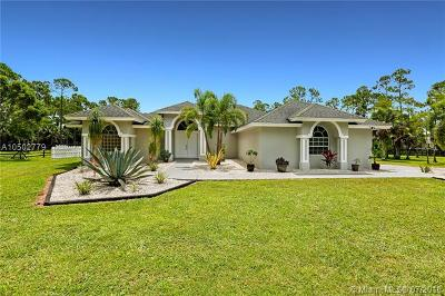 Loxahatchee Single Family Home For Sale: 2558 Palm Deer Dr