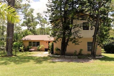 Jupiter Single Family Home For Sale: 11906 Sandy Run