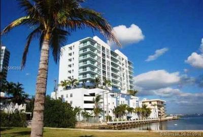 Moon Bay, Moon Bay Of Miami, Moon Bay Of Miami Condo Rental For Rent: 520 NE 29th St #503