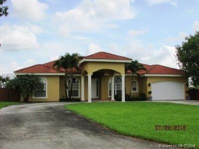 Miami Single Family Home For Sale: 16931 SW 213th Ln