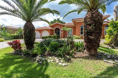 Palmetto Bay Single Family Home For Sale: 8101 SW 180th St