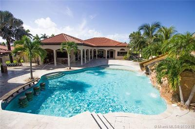 Hialeah Gardens Single Family Home For Sale: 10317 NW 135th St