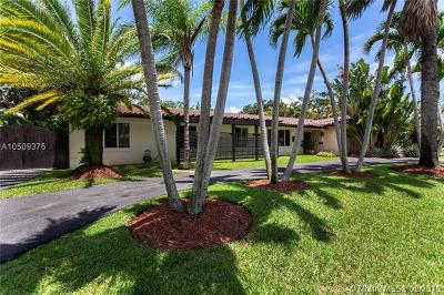Palmetto Bay Single Family Home For Sale: 7685 SW 143rd St