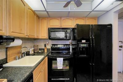 Sunny Isles Beach Condo For Sale: 210 172nd St #233