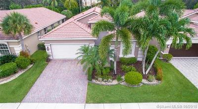 Lake Worth Single Family Home For Sale: 6620 Via Alfieri