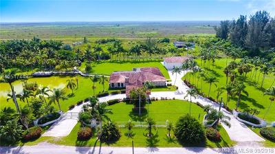 Miami Single Family Home For Sale: 15420 SW 212th Ave