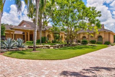Palm Beach County Single Family Home For Sale: 5238 Duckweed Rd