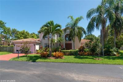 Palmetto Bay Single Family Home For Sale: 8108 SW 172nd Ter