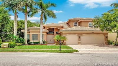Palm Beach County Single Family Home For Sale: 11048 Brandywine Lake Way
