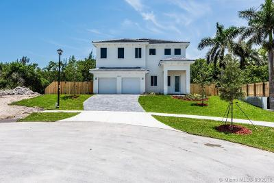 Cutler Bay Single Family Home For Sale: 20521 SW 79th Ct
