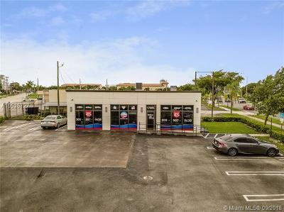 Palmetto Bay Commercial For Sale: 17605 S Dixie Hwy
