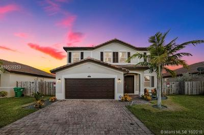 Homestead Single Family Home For Sale: 12874 SW 283rd Ln