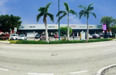 Miami Commercial For Sale: 2055 SW 8th St