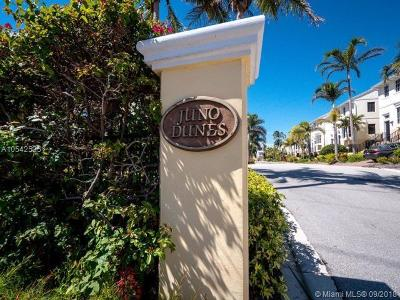 Juno Beach Condo For Sale: 463 Juno Dunes Way
