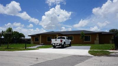 Miami Gardens Single Family Home For Sale: 2981 NW 209th Ter